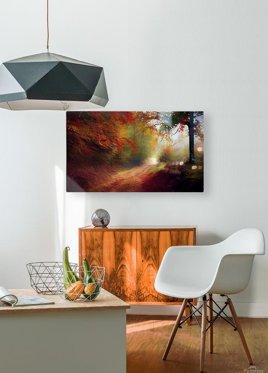 Autumnal Landscape 5  HD Metal print with Floating Frame on Back