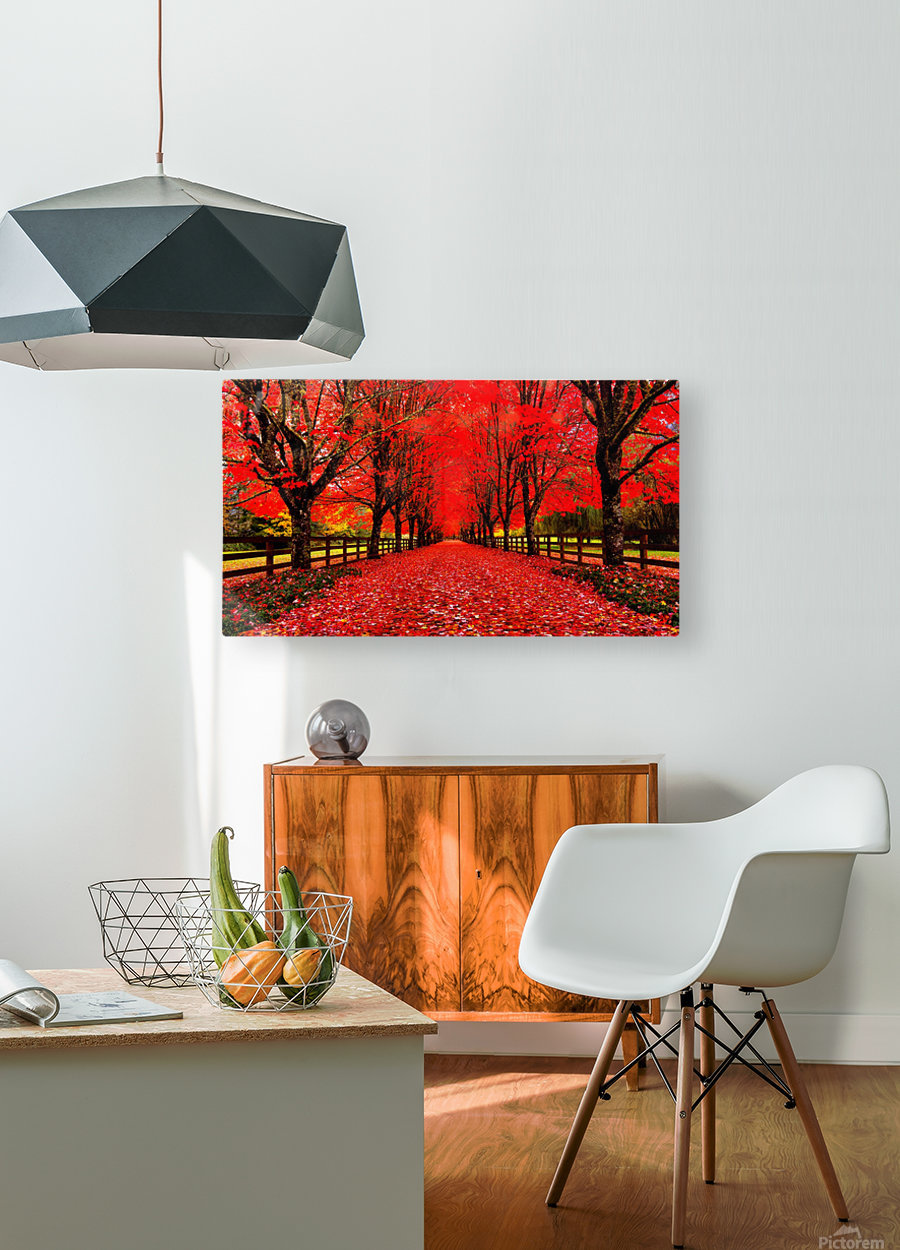 Red Carpet  HD Metal print with Floating Frame on Back