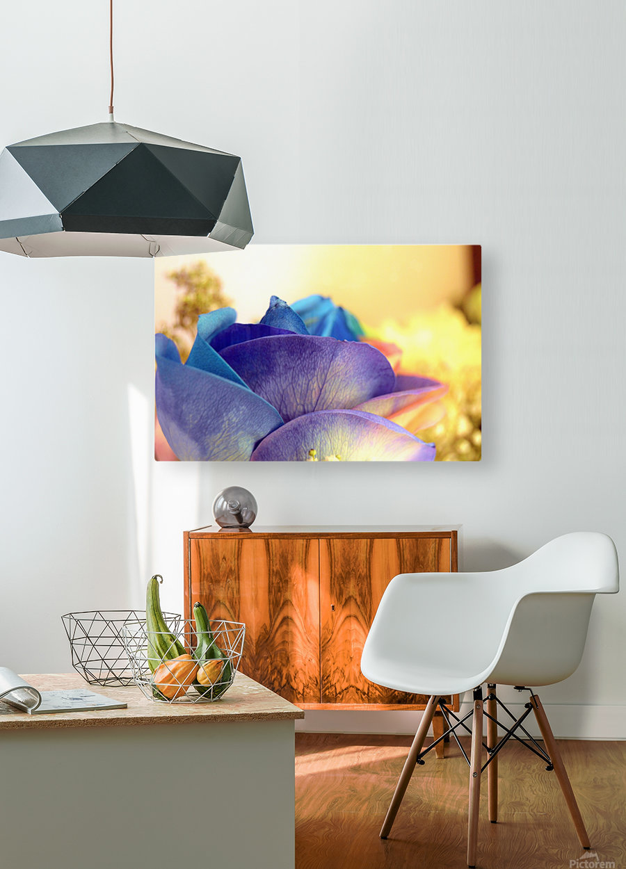 Colourful Days  HD Metal print with Floating Frame on Back