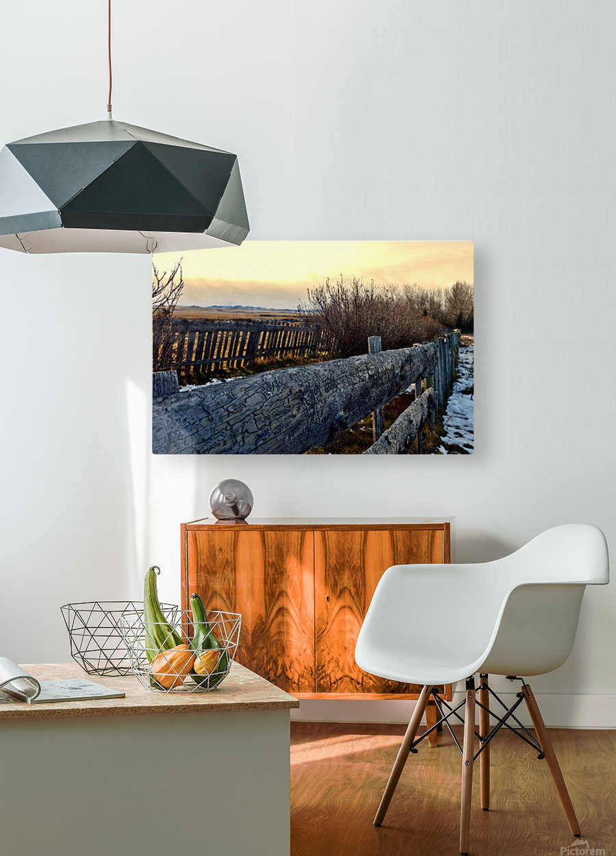 On The Fence  HD Metal print with Floating Frame on Back