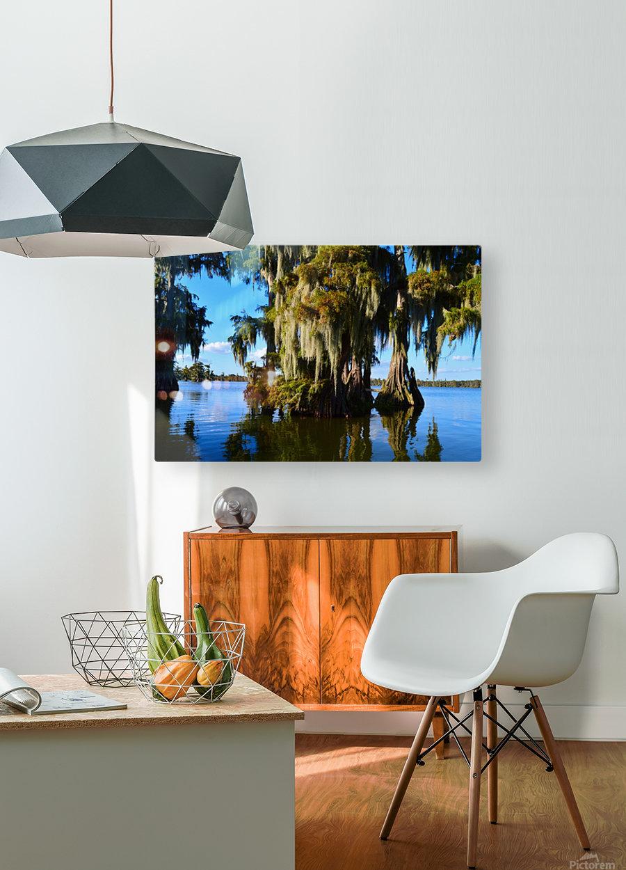 Rock Bottom  HD Metal print with Floating Frame on Back