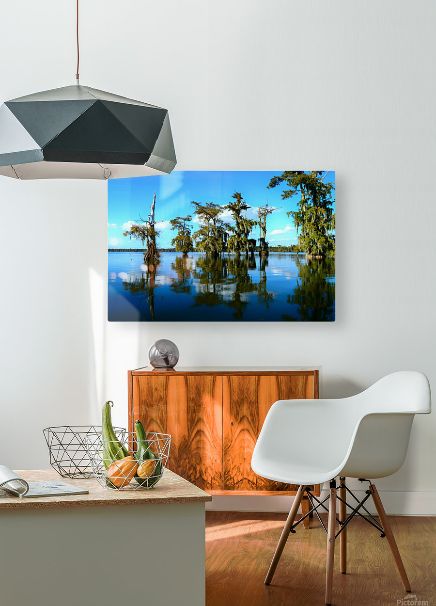 Reflect Much  HD Metal print with Floating Frame on Back