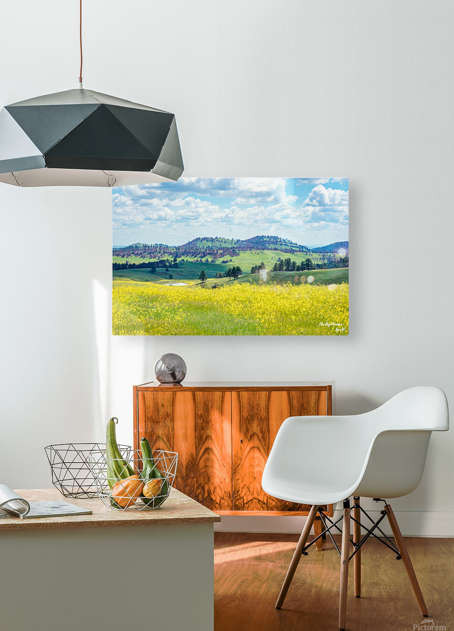 Custer State Park Yellow  HD Metal print with Floating Frame on Back