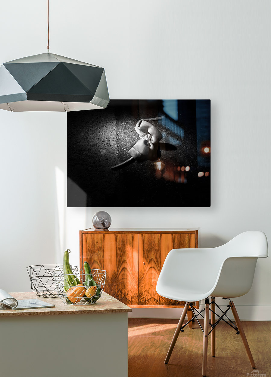 gets lost and cries for friends  HD Metal print with Floating Frame on Back
