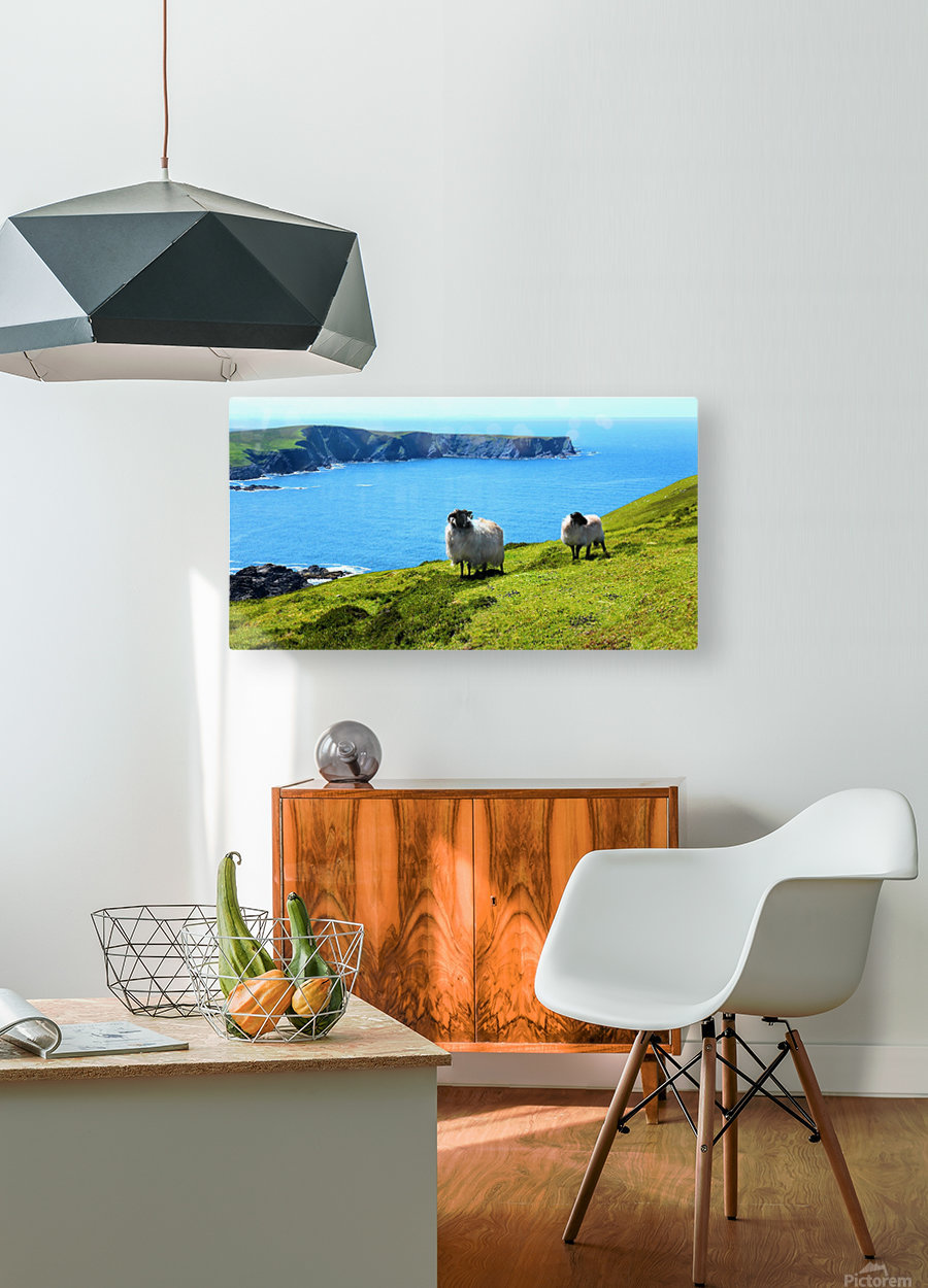 Home with a View  HD Metal print with Floating Frame on Back