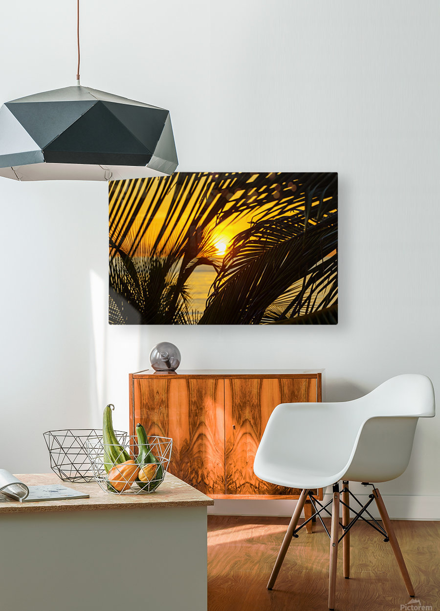 Sunrise through the palms  HD Metal print with Floating Frame on Back