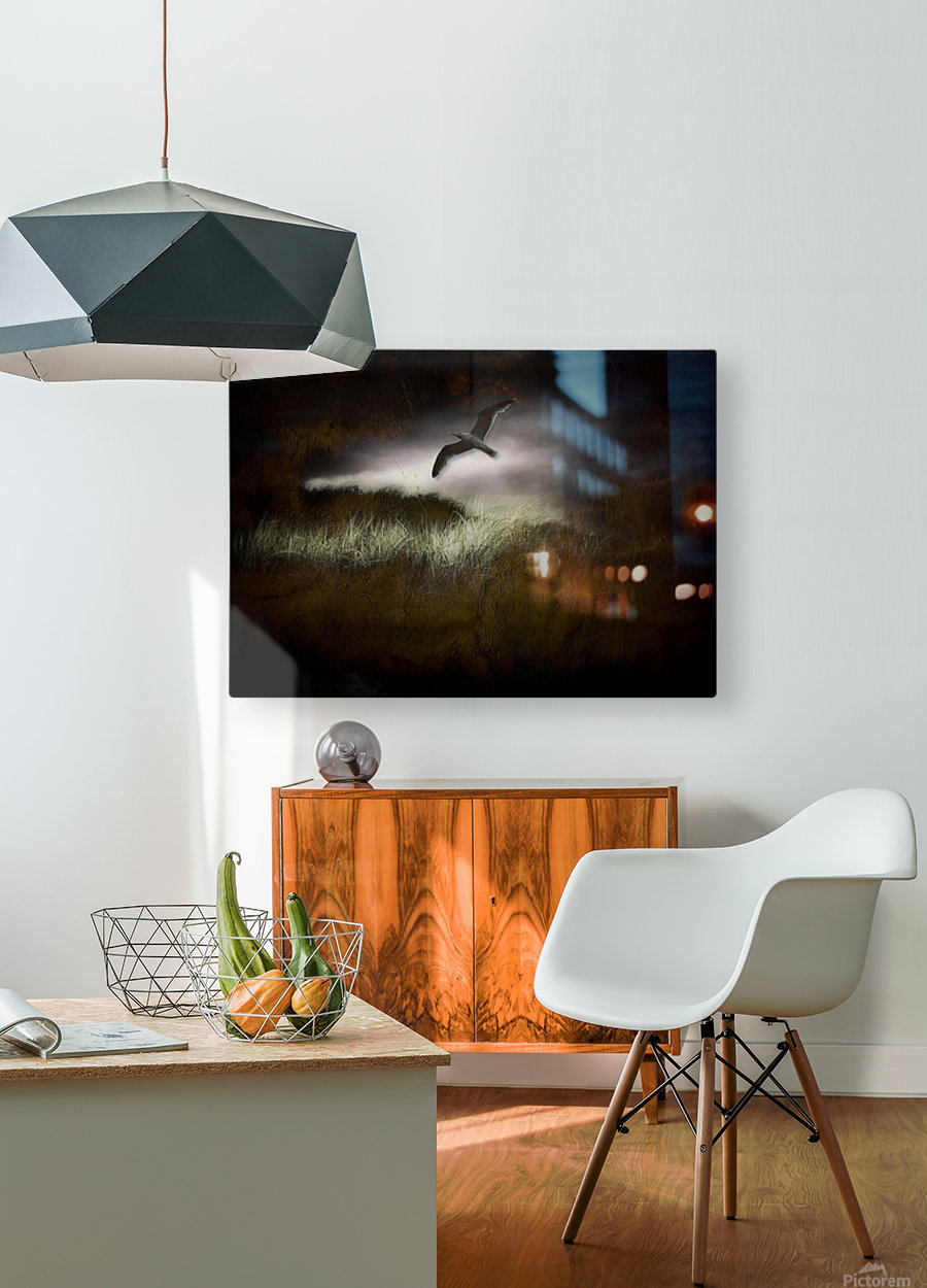 Seagull in Dark Landscape  HD Metal print with Floating Frame on Back