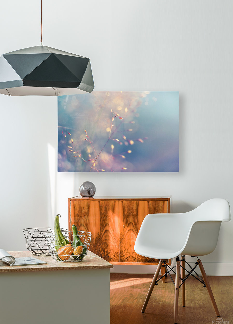 Spikelet  HD Metal print with Floating Frame on Back