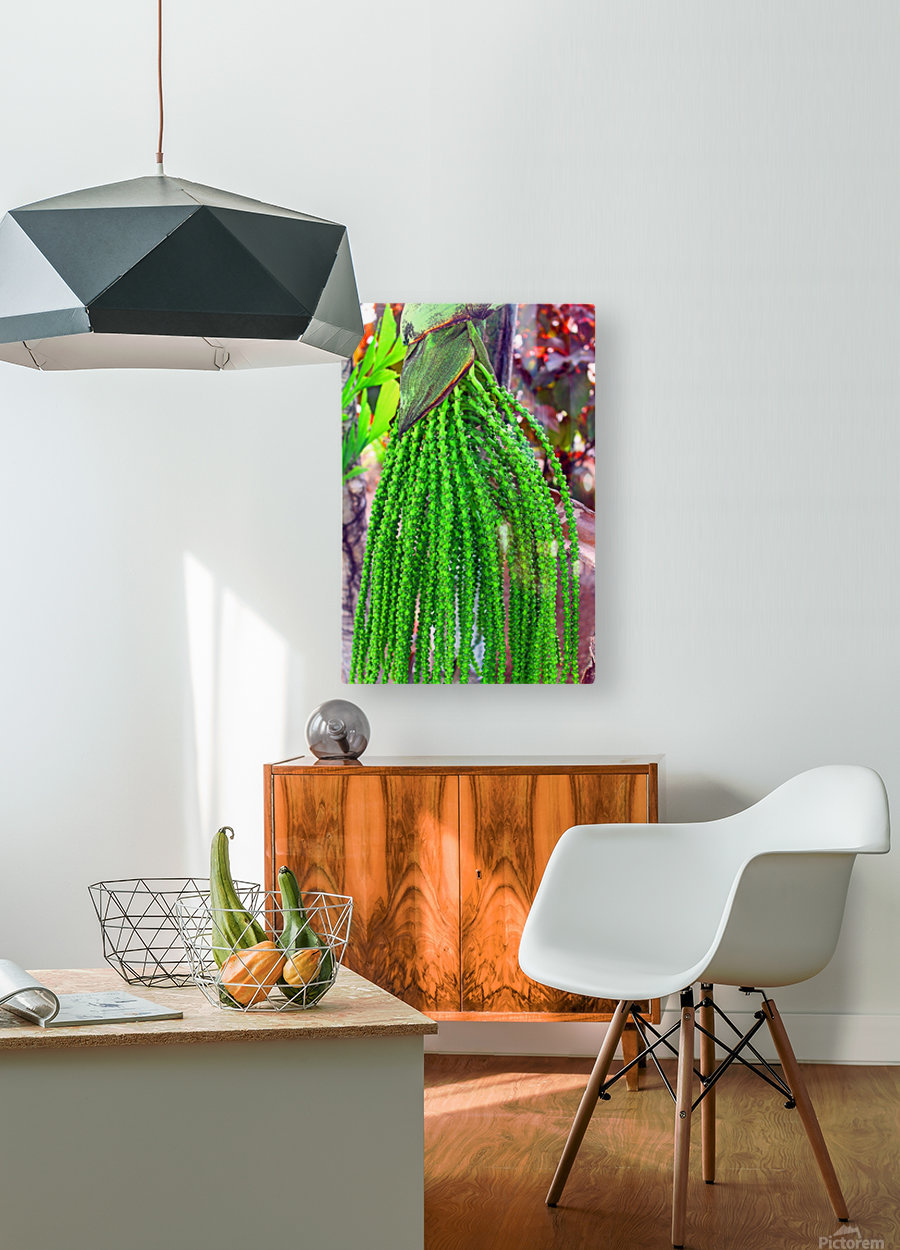 Plant Dreads  HD Metal print with Floating Frame on Back