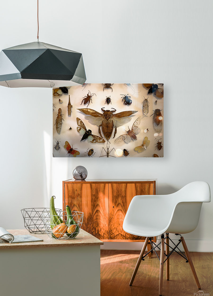 Biodiversity  HD Metal print with Floating Frame on Back