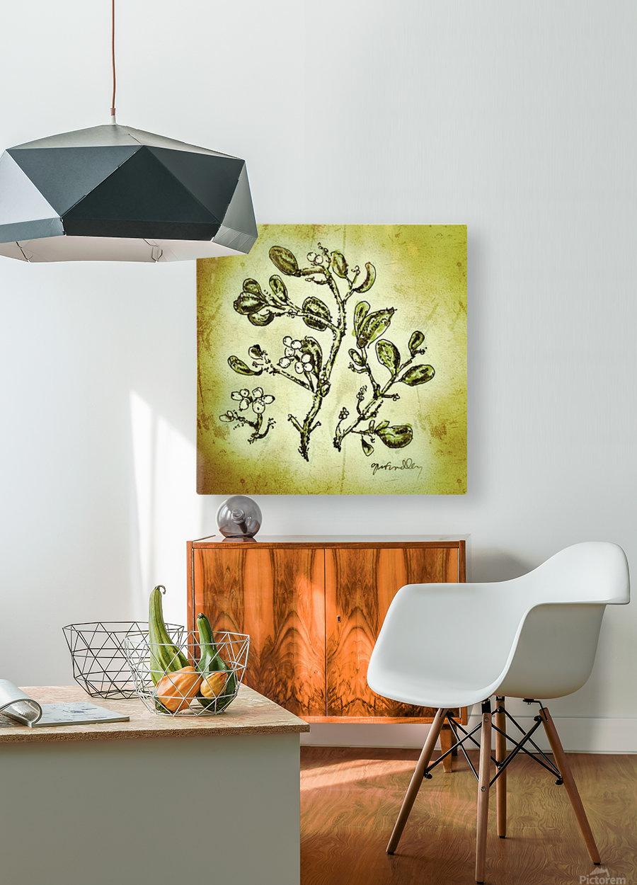 Mistletoe  HD Metal print with Floating Frame on Back
