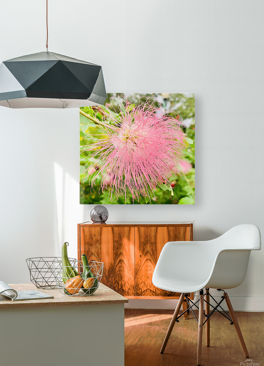 Bad Hair Day  HD Metal print with Floating Frame on Back