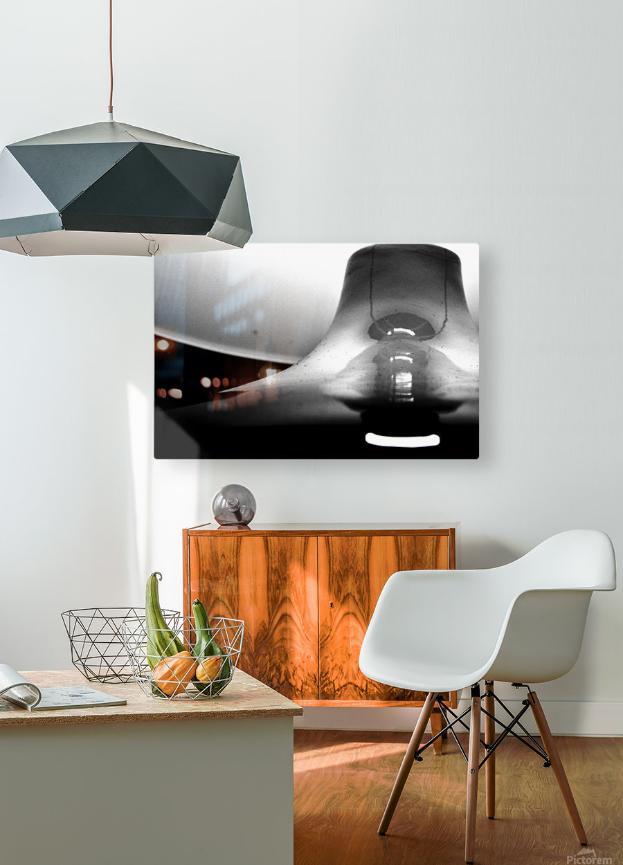 Here Alone  HD Metal print with Floating Frame on Back