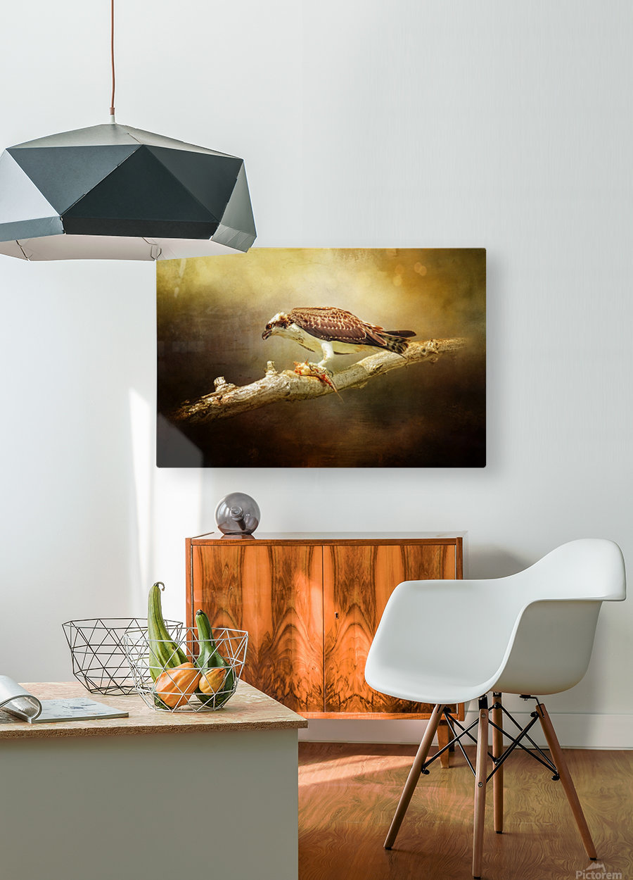 Lunch Time  HD Metal print with Floating Frame on Back