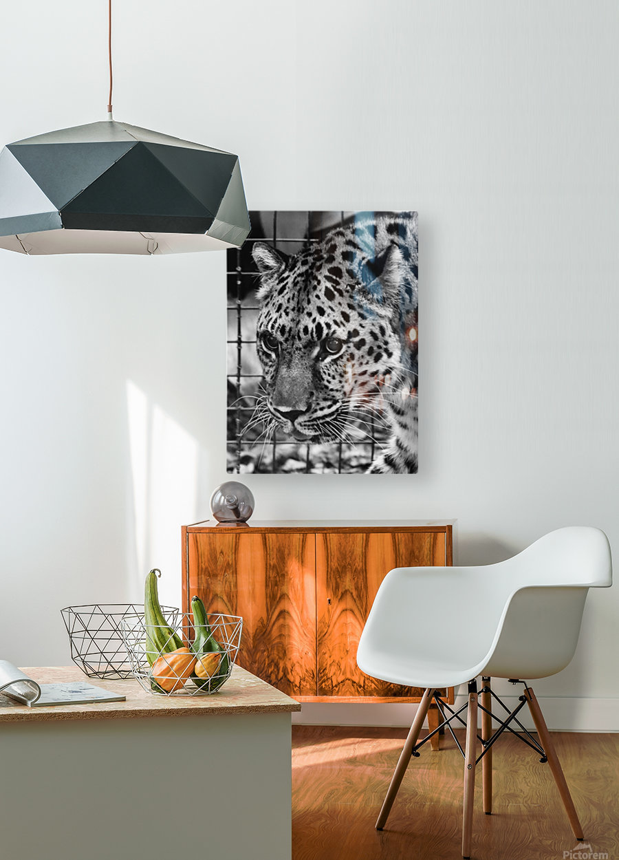 Leopard in Black & White  HD Metal print with Floating Frame on Back