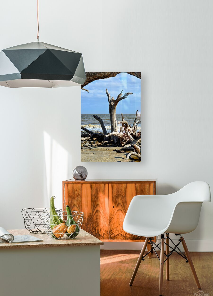 Driftwood Beach Uplifting  HD Metal print with Floating Frame on Back