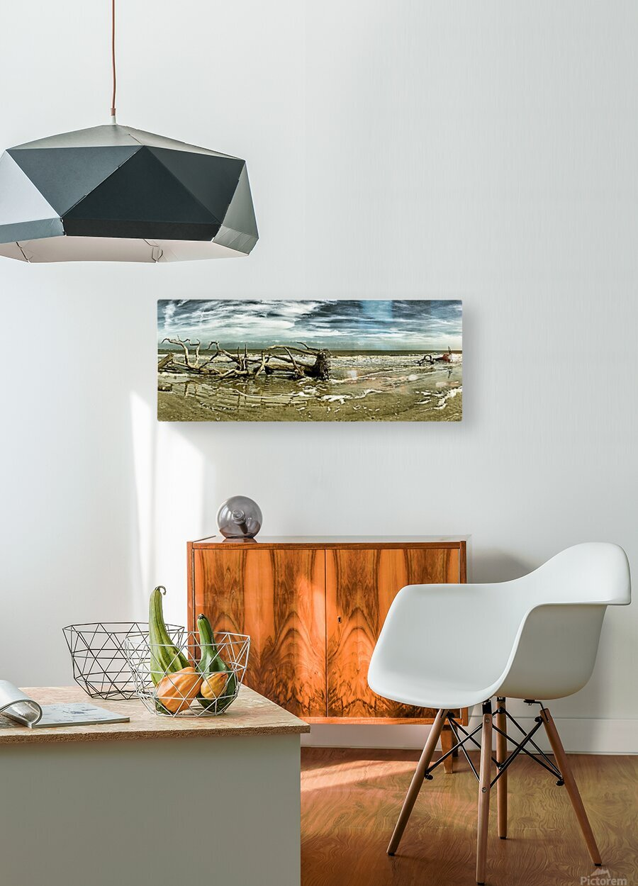 Driftwood Beach Panorama 103 Blackgold  HD Metal print with Floating Frame on Back