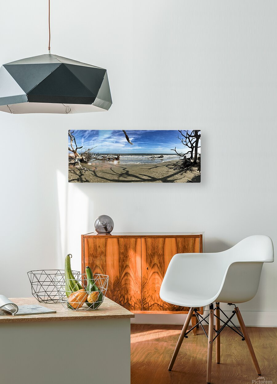 Driftwood Beach Panorama Shadows  HD Metal print with Floating Frame on Back