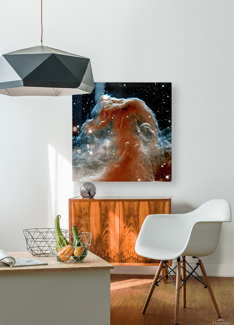 Horsehead Nebula In Space  HD Metal print with Floating Frame on Back