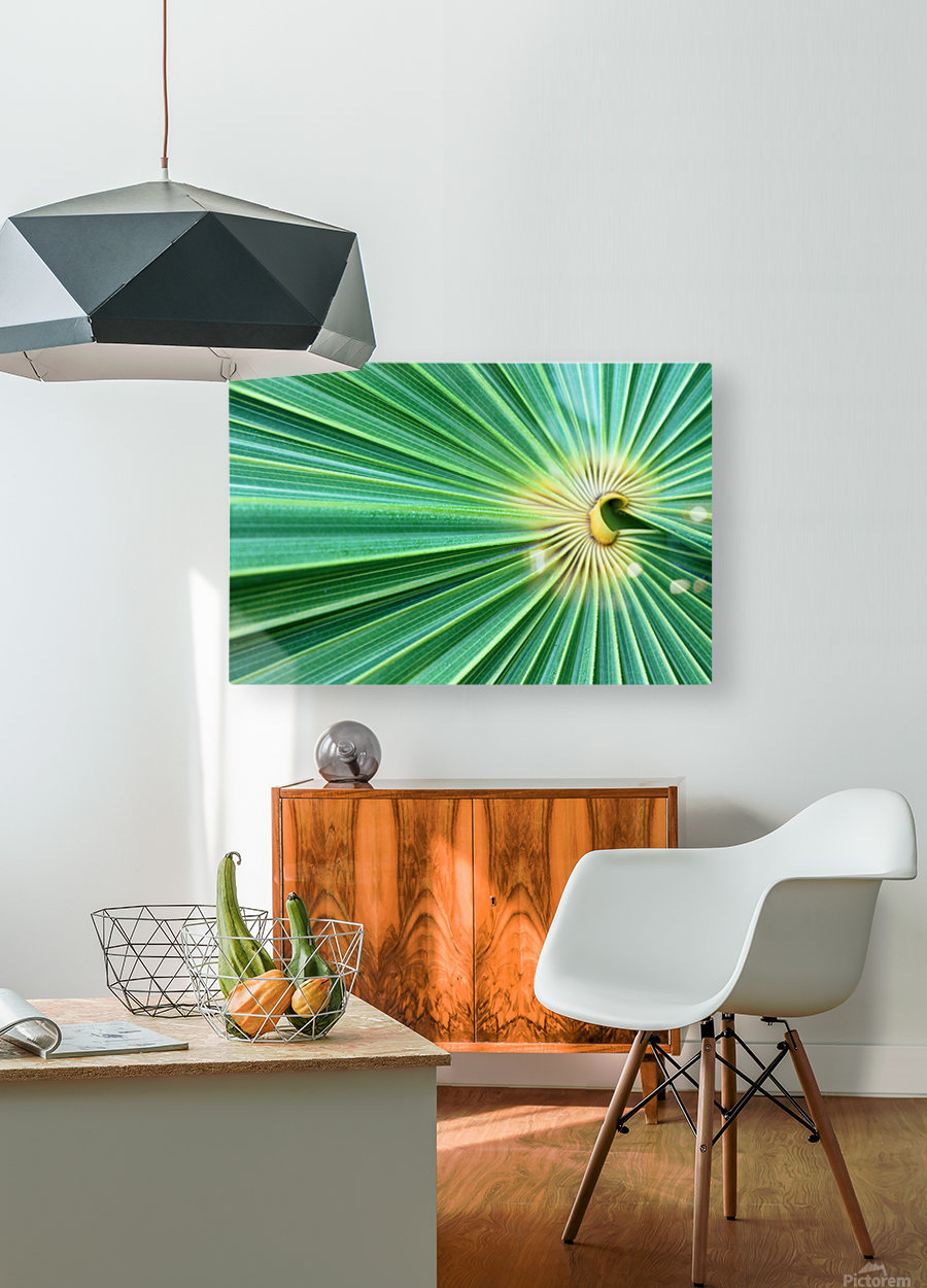 Spreading the Green  HD Metal print with Floating Frame on Back