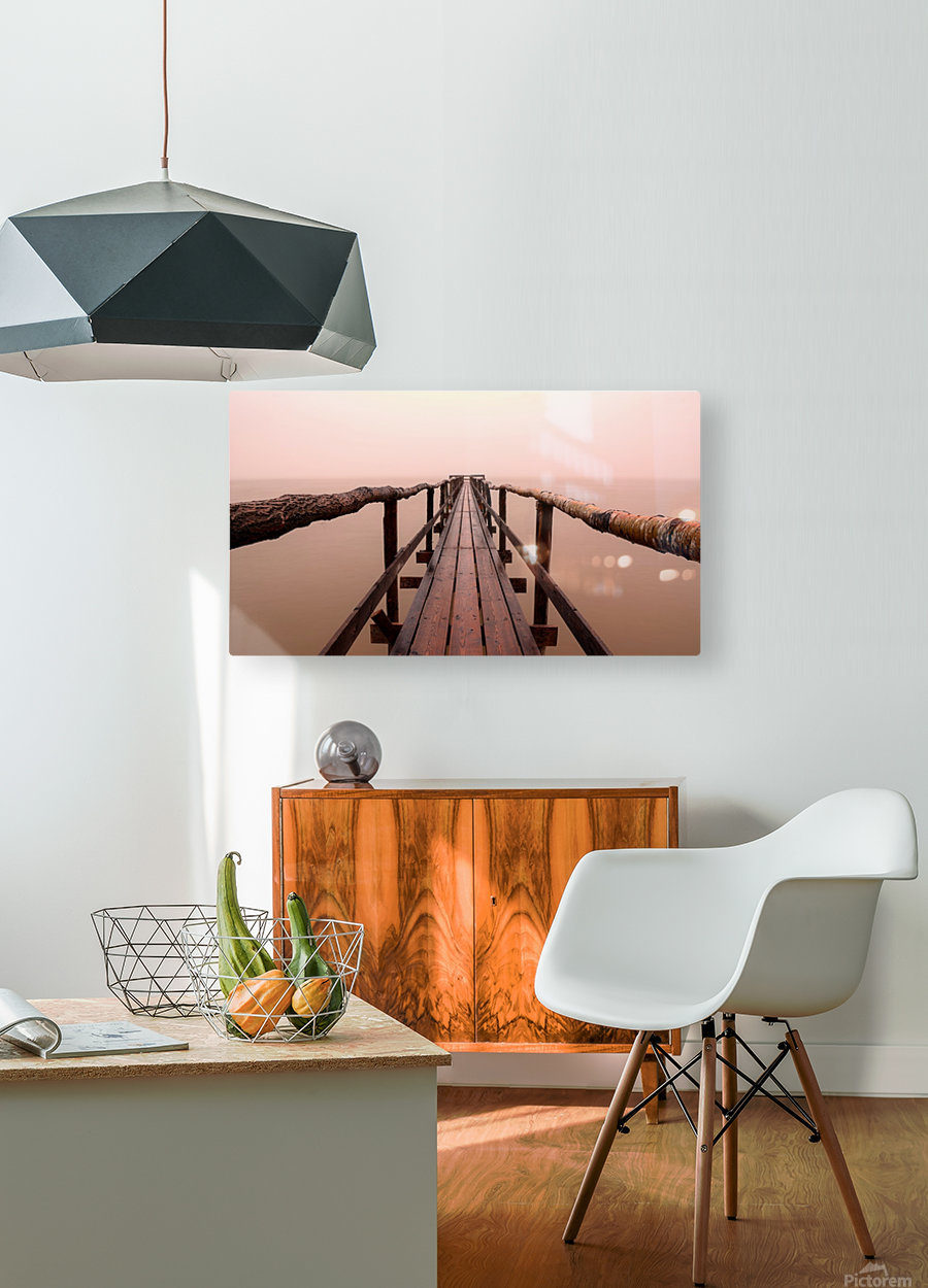 Enter The Lake  HD Metal print with Floating Frame on Back