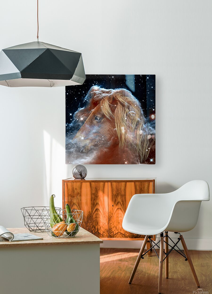 Horsehead Nebula with Horse Head in Space  HD Metal print with Floating Frame on Back