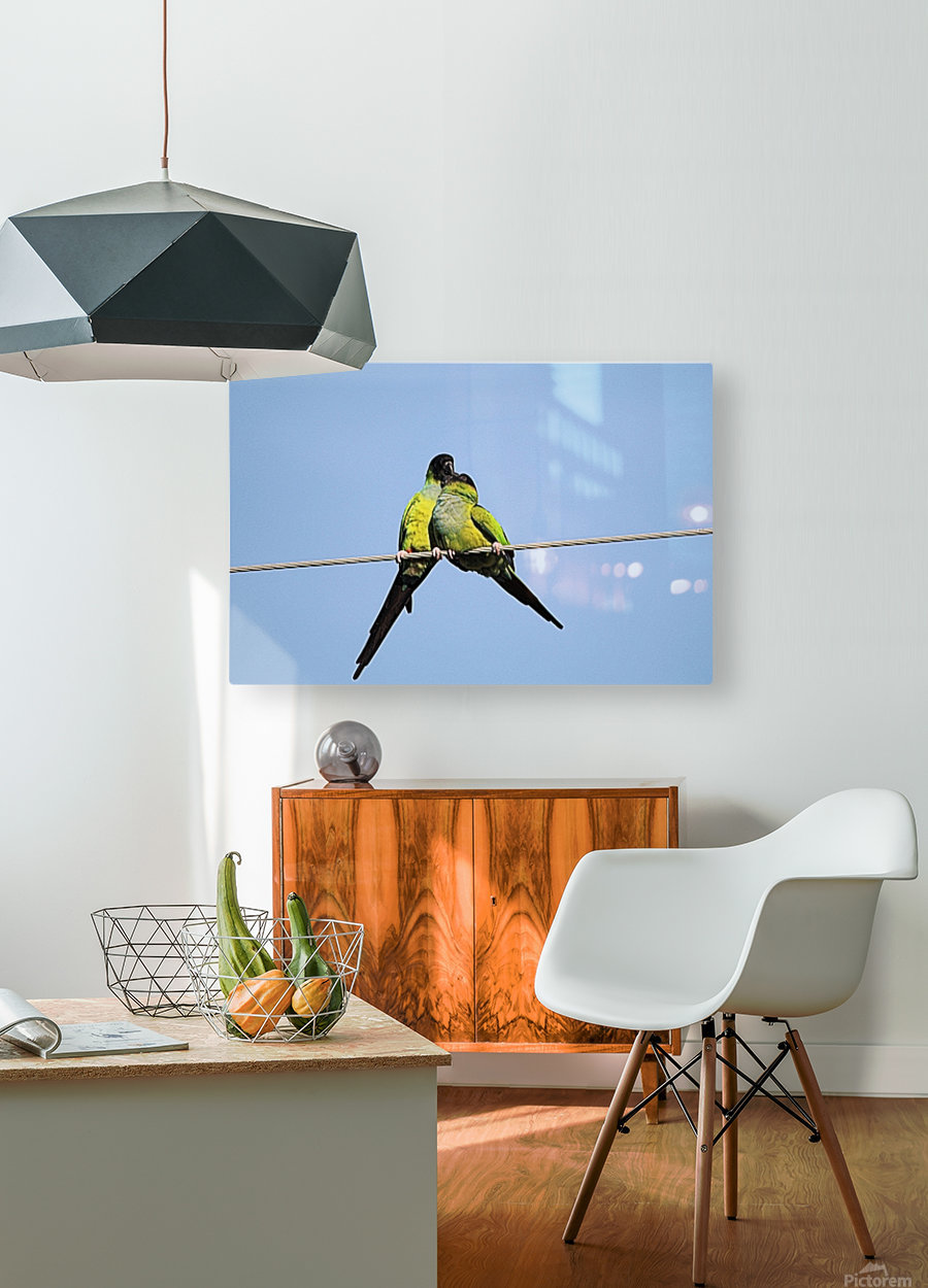 love  HD Metal print with Floating Frame on Back