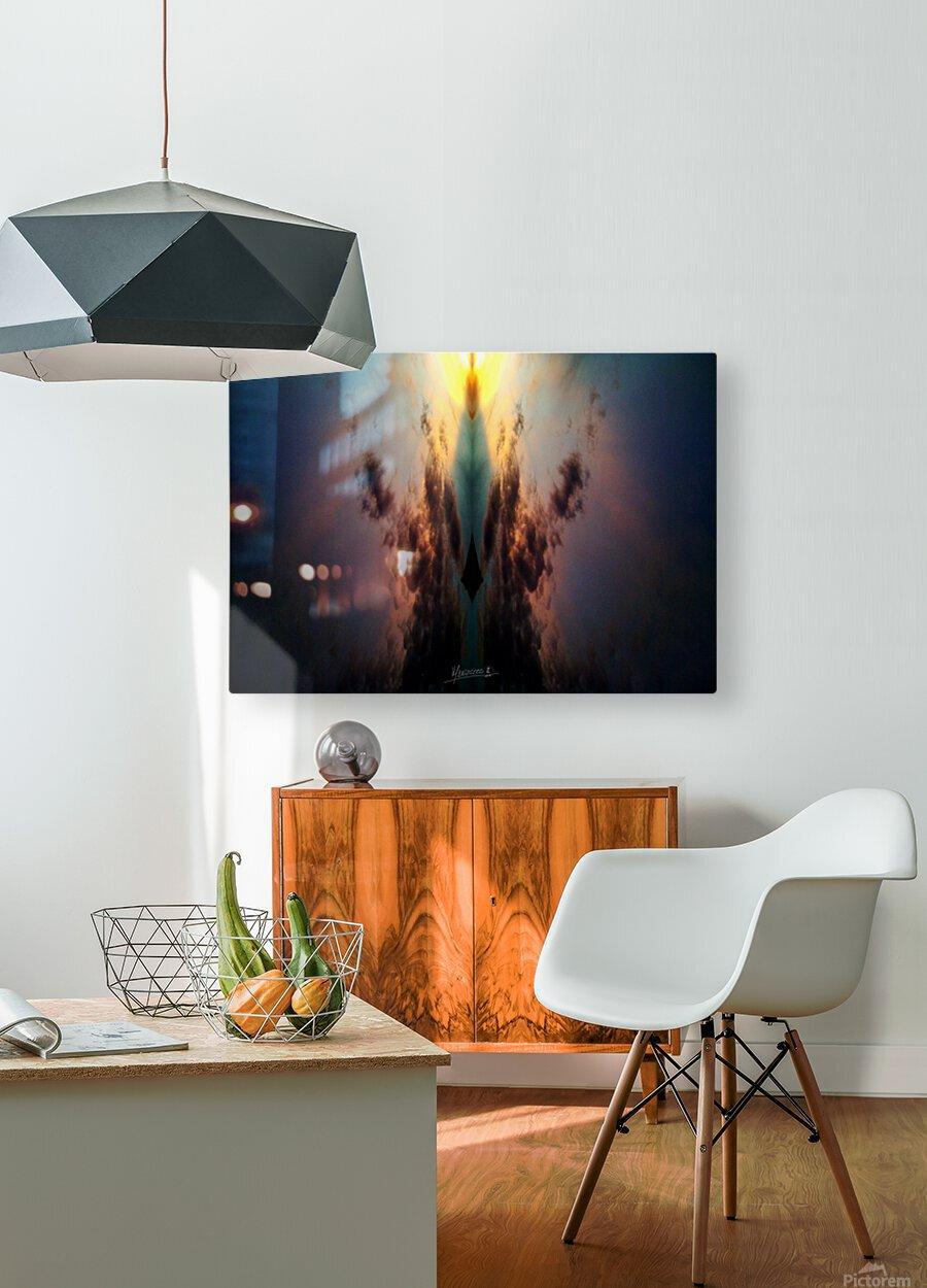 Skipe 4  HD Metal print with Floating Frame on Back