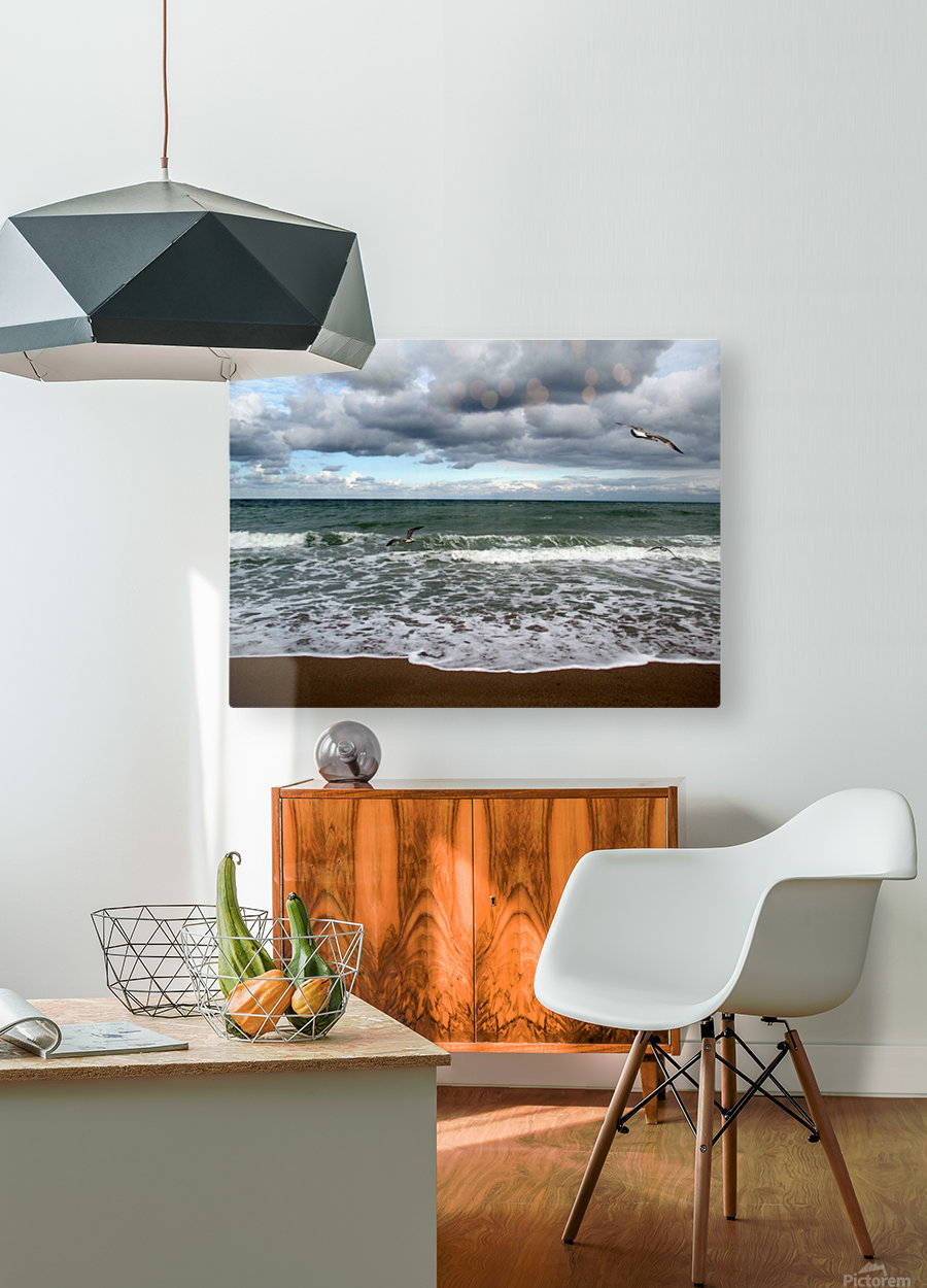 A sense of freedom by the beach  HD Metal print with Floating Frame on Back