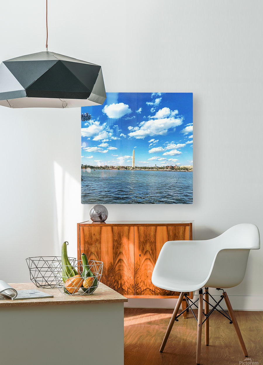 Tidal Basin Cherry Blossoms  HD Metal print with Floating Frame on Back