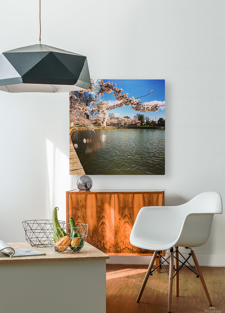 Cherry Blossom Branch  HD Metal print with Floating Frame on Back