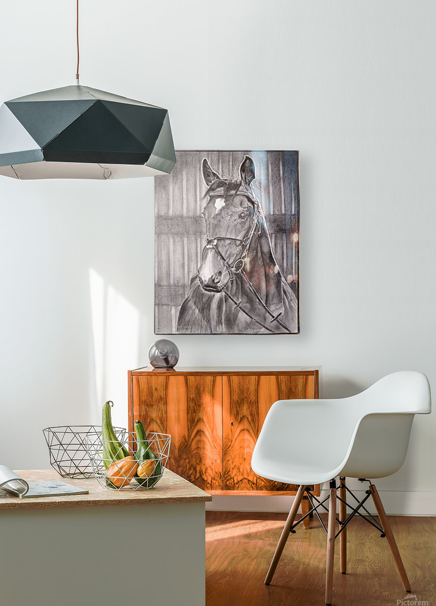Horse_DKS  HD Metal print with Floating Frame on Back