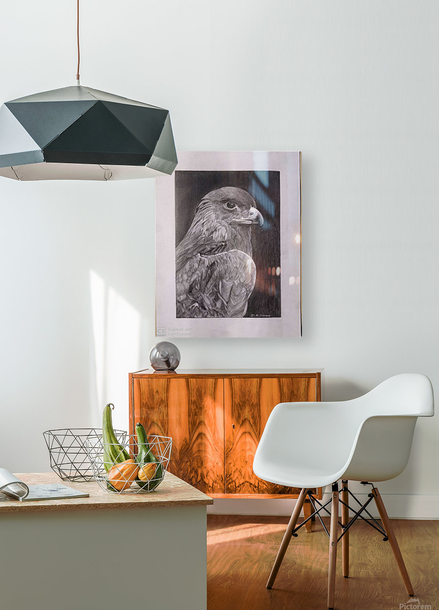 Falcon_DKS  HD Metal print with Floating Frame on Back