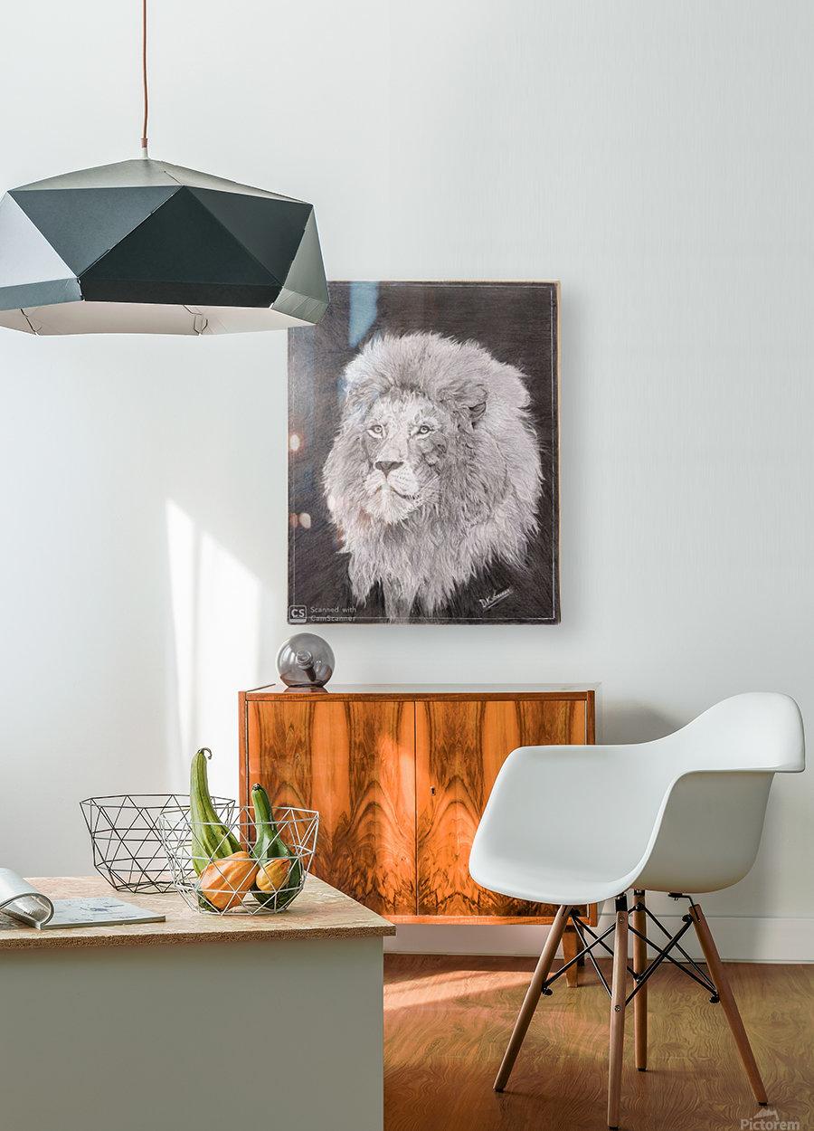 Lion_DKS  HD Metal print with Floating Frame on Back