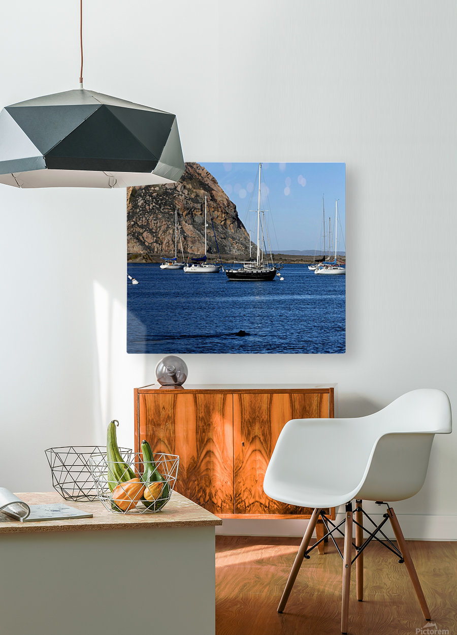 Morro Rock  HD Metal print with Floating Frame on Back