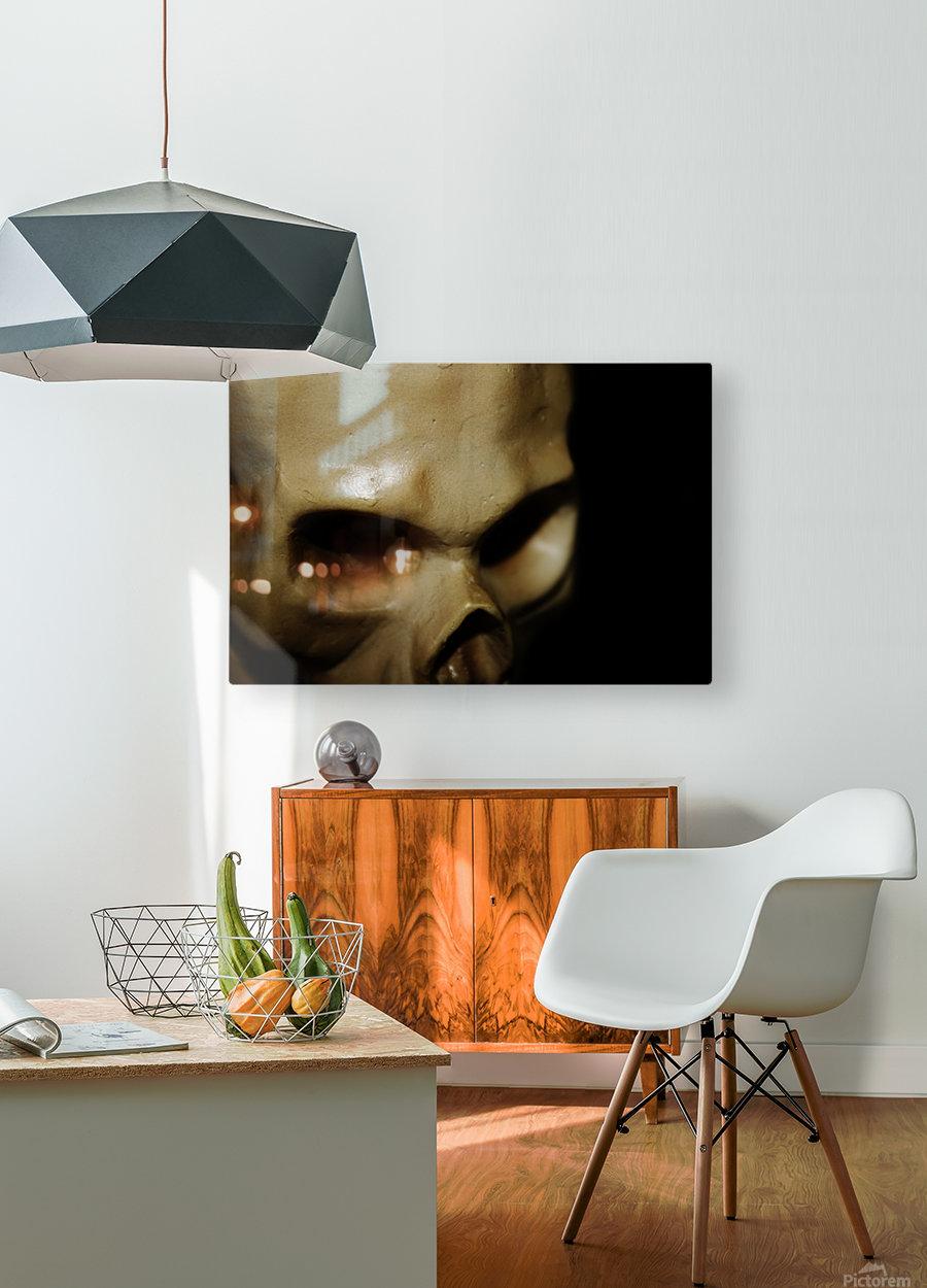 Skeleton Head  HD Metal print with Floating Frame on Back