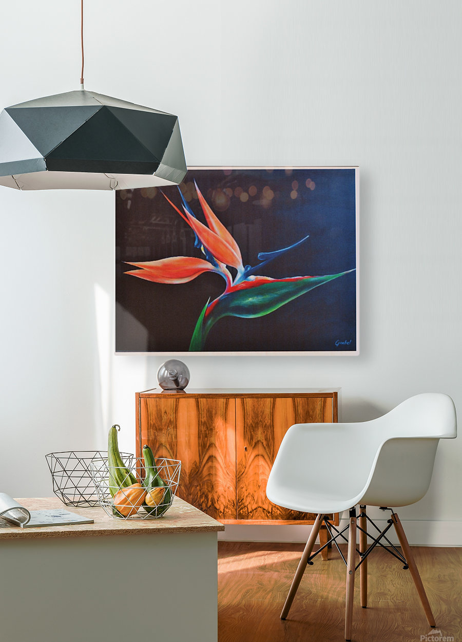Bird of Paradise 2  HD Metal print with Floating Frame on Back