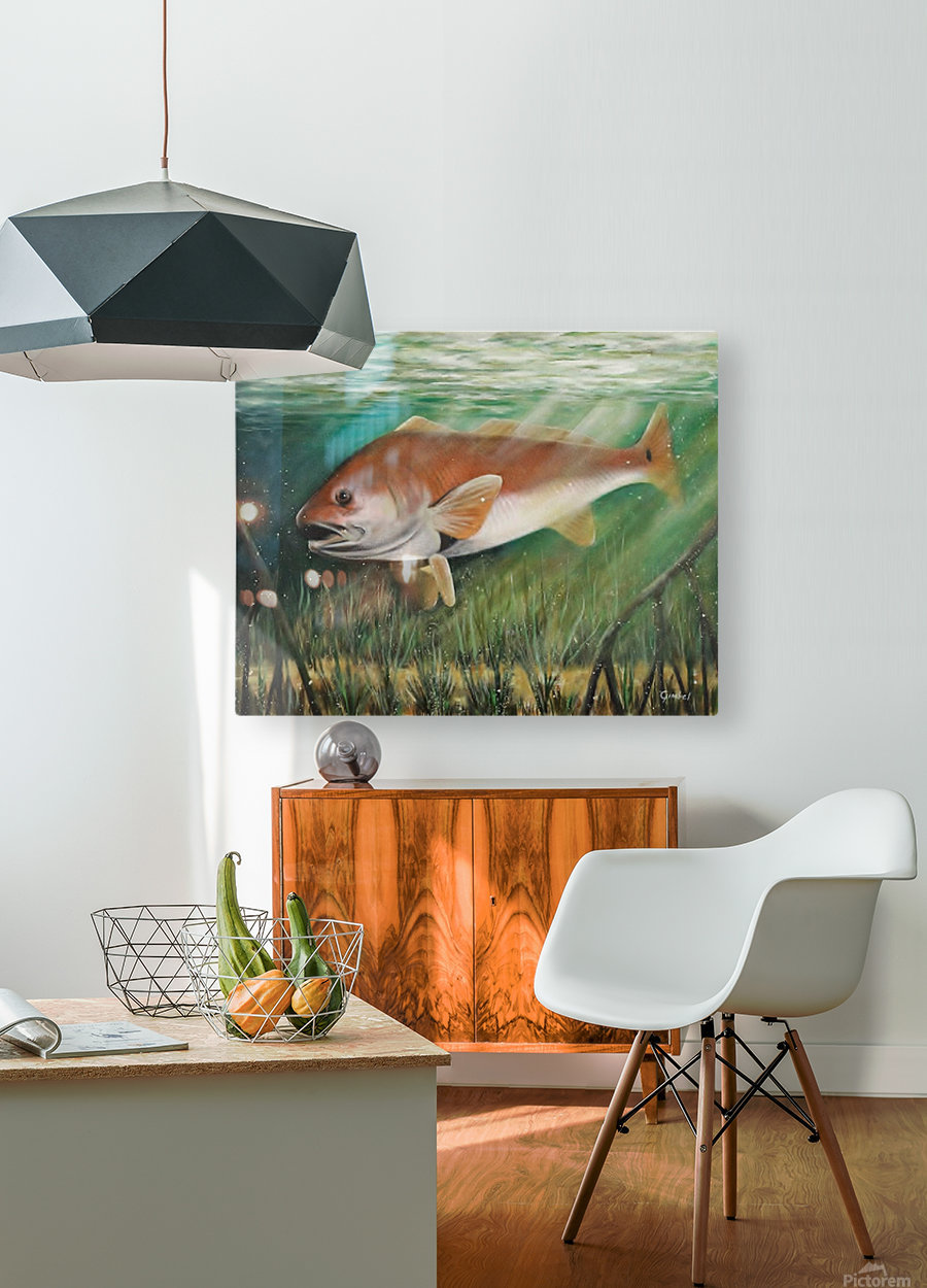 redfish  HD Metal print with Floating Frame on Back