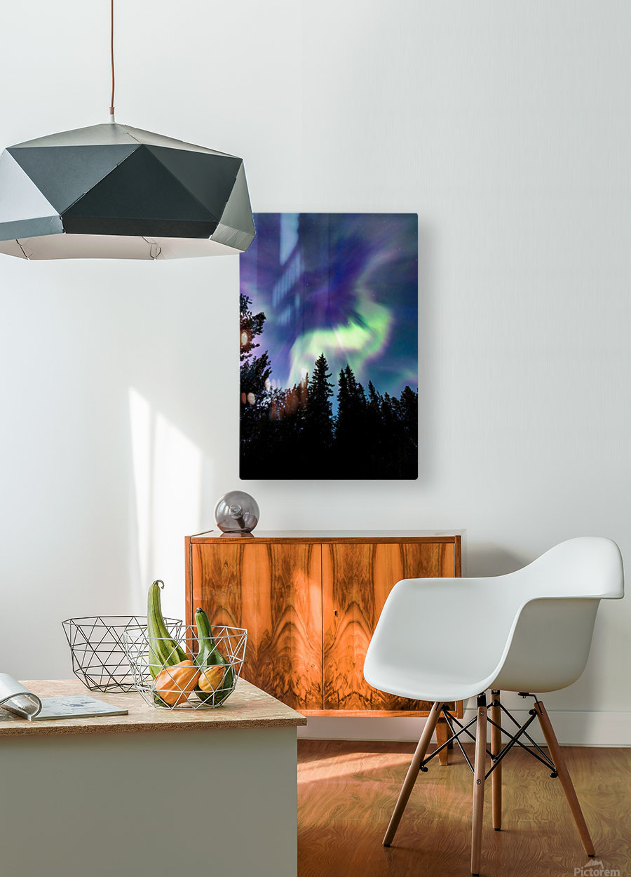 Up in the Sky  HD Metal print with Floating Frame on Back