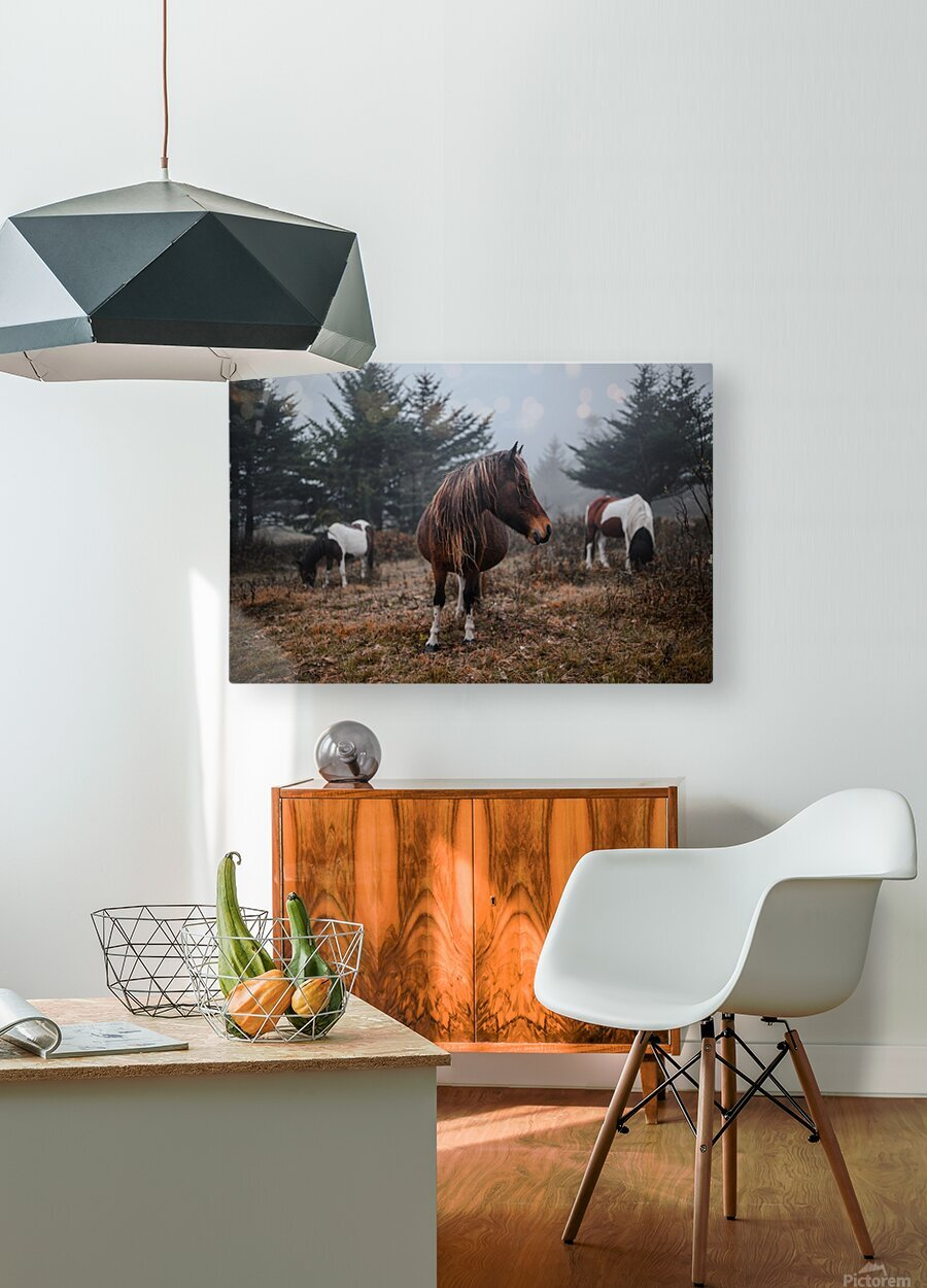 In the Wild  HD Metal print with Floating Frame on Back