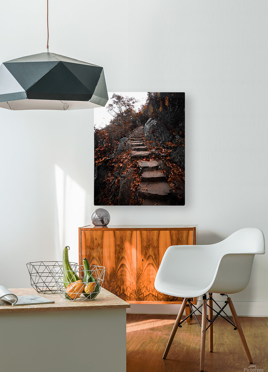 Autumn Path  HD Metal print with Floating Frame on Back