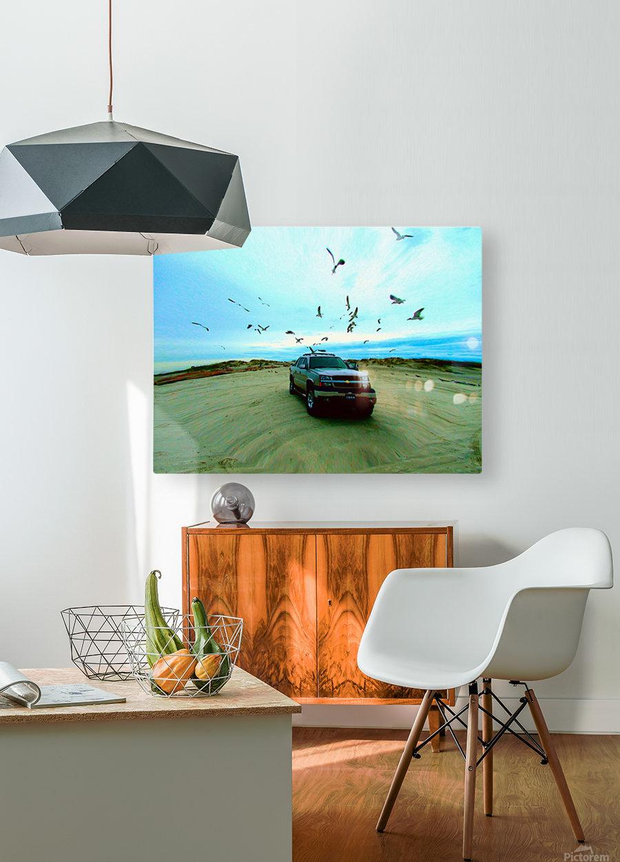 DSCF2094  HD Metal print with Floating Frame on Back