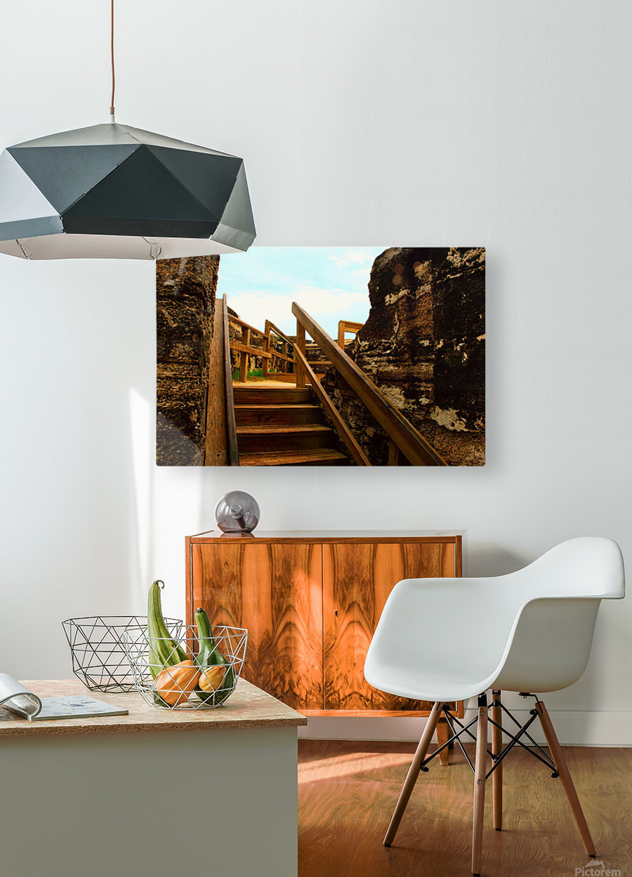 Picture165  HD Metal print with Floating Frame on Back