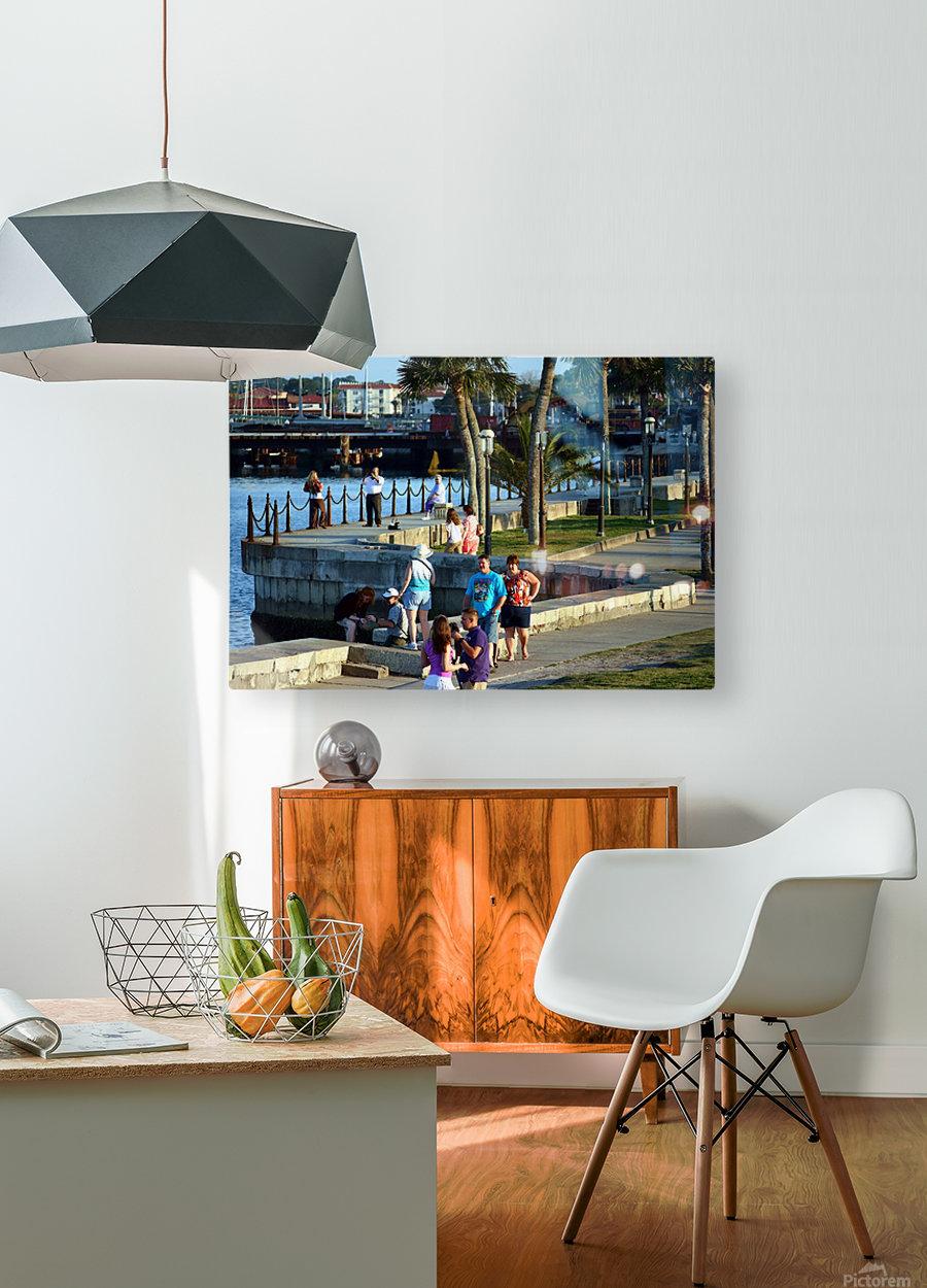 Walmart1731  HD Metal print with Floating Frame on Back