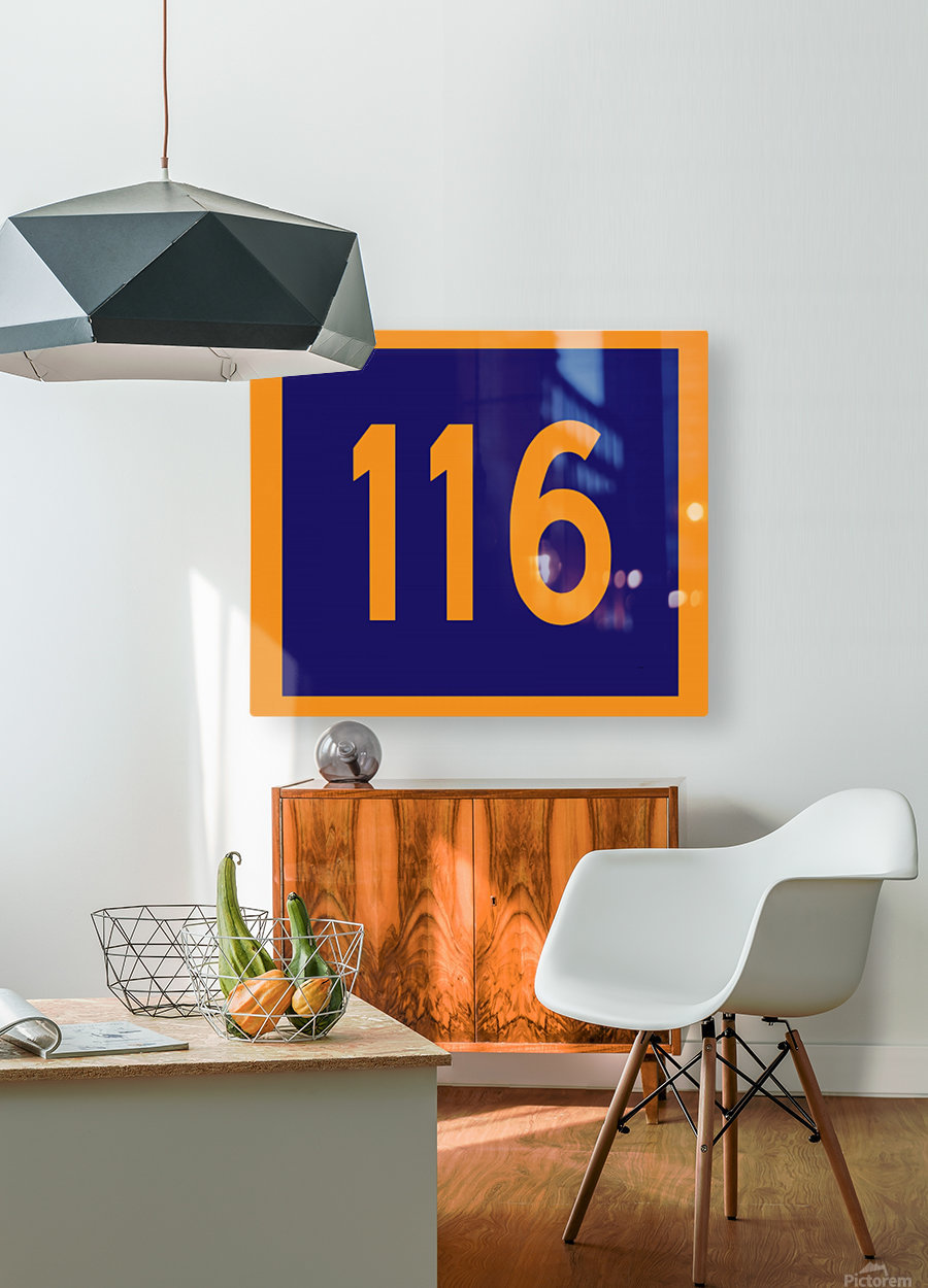 Number 116  HD Metal print with Floating Frame on Back