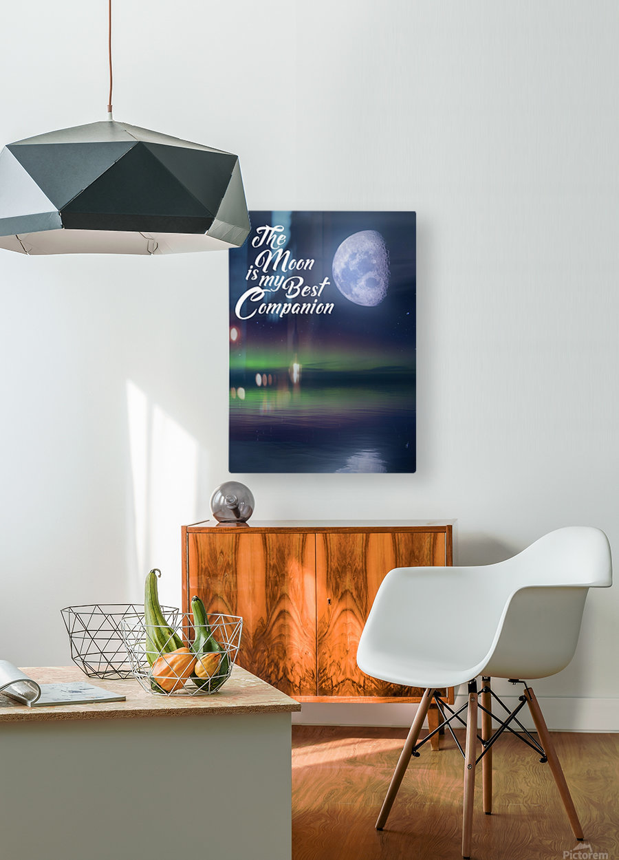 The Moon is my Best Companion  HD Metal print with Floating Frame on Back