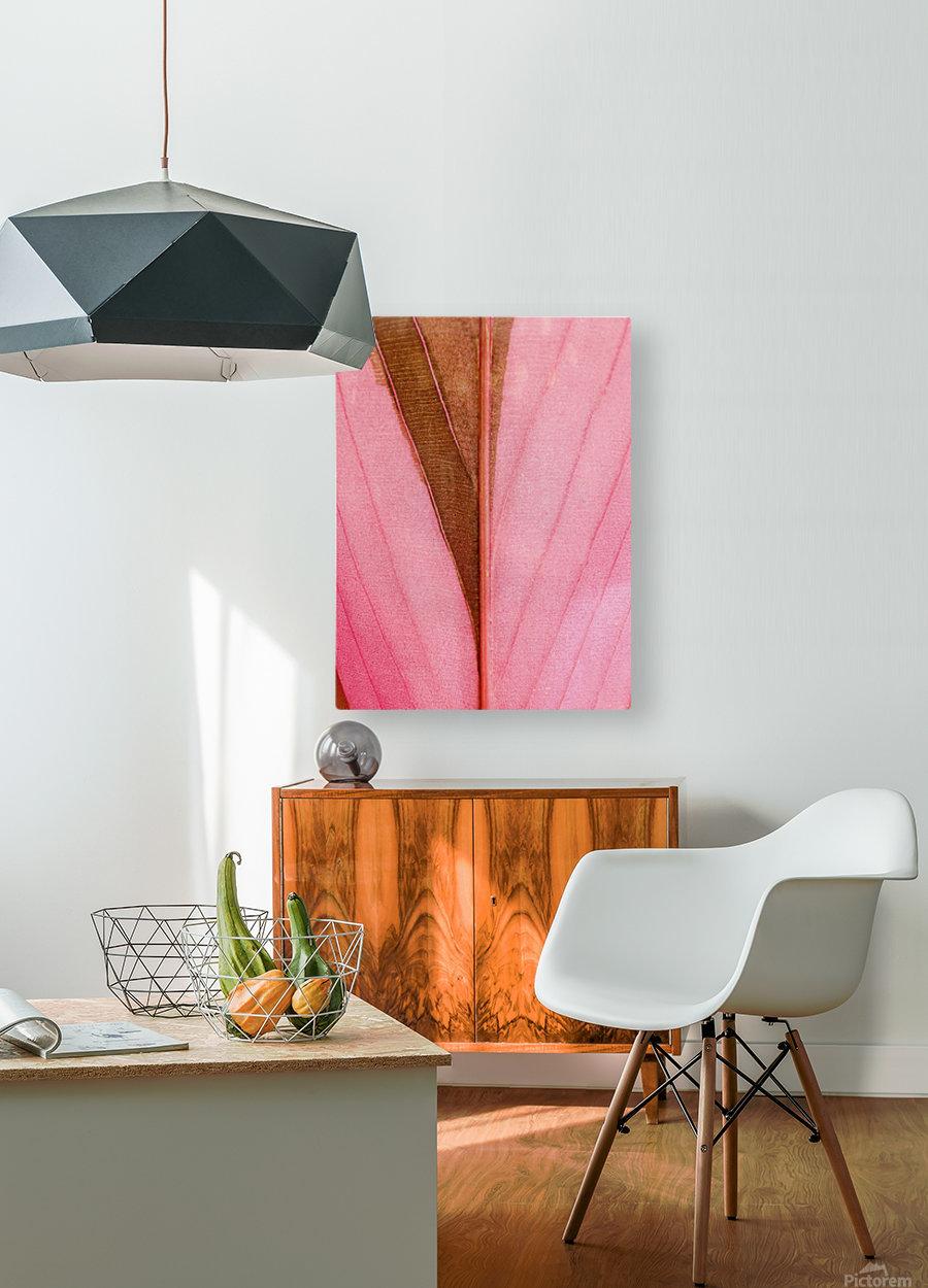 Macro Leaf  HD Metal print with Floating Frame on Back