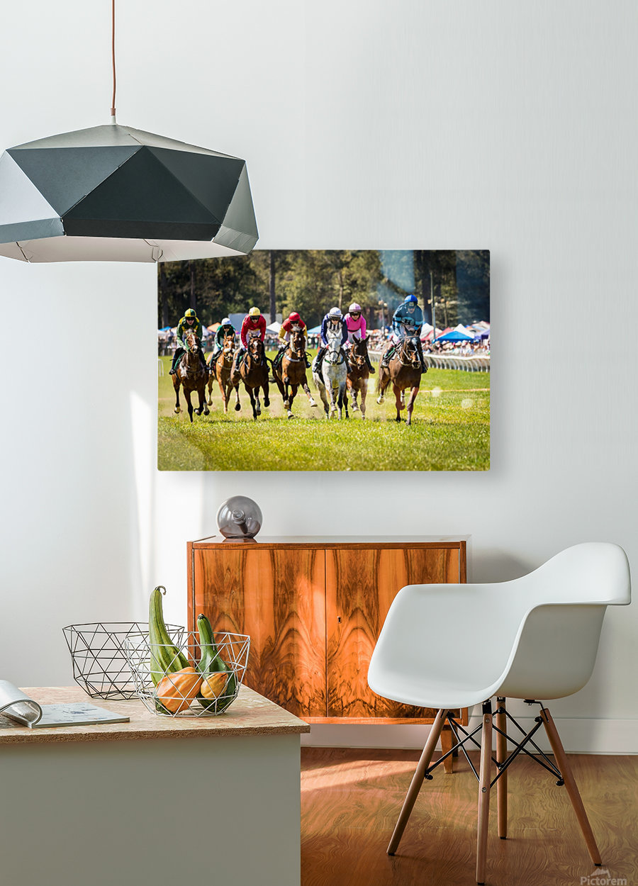 Aiken Steeplechase 4998  HD Metal print with Floating Frame on Back
