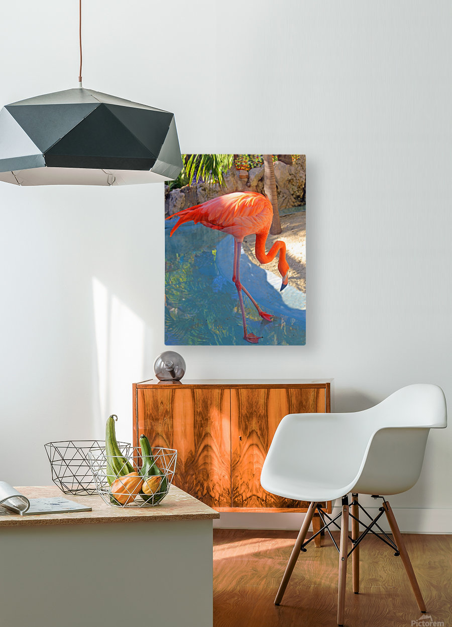 Living in Paradise  HD Metal print with Floating Frame on Back