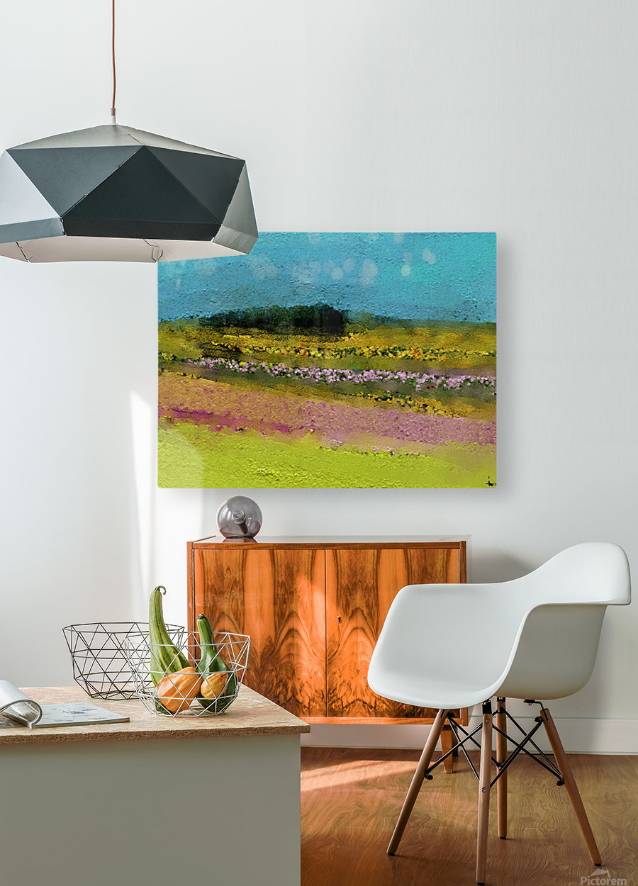 0268  HD Metal print with Floating Frame on Back